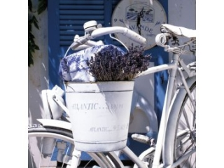 Ubrousky AMBIENTE  Summer Lavender