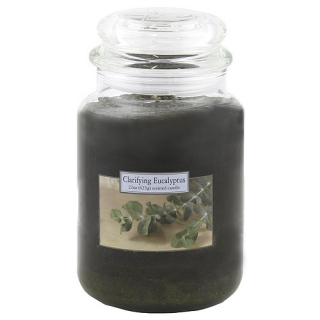 Carolina Candles-Eukalyptus, 623 g